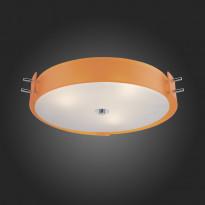 Светильник потолочный ST-Luce SL484.092.06
