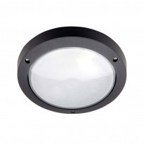 Уличный настенно-потолочный светильник Brilliant Skipper 48480/06