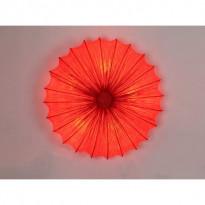 Светильник потолочный ST-Luce SL351.062.05