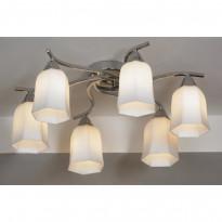 Светильник потолочный Lussole Bellaria LSC-8803-06
