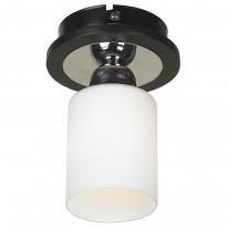Светильник точечный Lussole Caprile LSF-6107-01