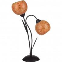 Лампа настольная Lussole Bagheria LSF-6204-02