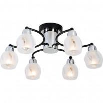 Светильник потолочный Lussole Vieste LSL-8503-06