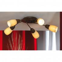 Светильник потолочный Lussole Cevedale LSQ-6917-05