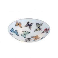 Настенный светильник Markslojd Butterfly 105432
