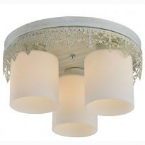 Светильник потолочный Lussole LSP-0049