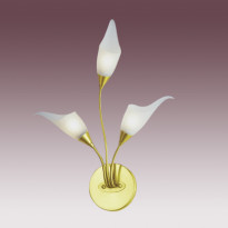 Бра N-Light BX-0143/3 Satin Gold
