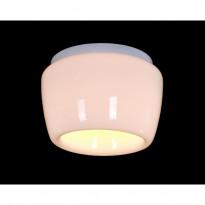 Светильник потолочный ST-Luce SL876.502.01