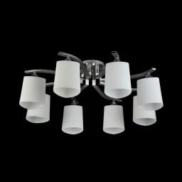 Светильник потолочный Maytoni Eurosize 1 TOC001-08-N