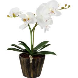 Лампа настольная Globo Flowerpower 28002