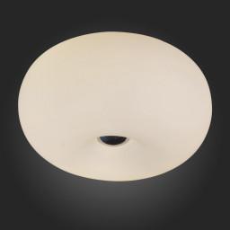 Светильник потолочный ST-Luce SL297.502.03