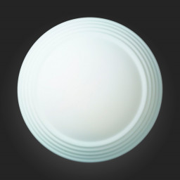 Светильник настенно-потолочный ST-Luce SL506.502.01