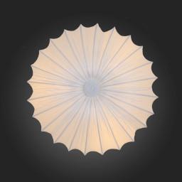 Светильник потолочный ST-Luce SL351.052.05