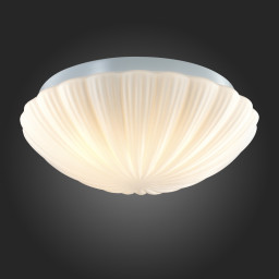 Светильник настенно-потолочный ST-Luce SL495.502.03