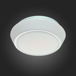 Светильник настенный ST-Luce SL496.502.01