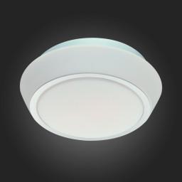 Светильник настенный ST-Luce SL496.502.02