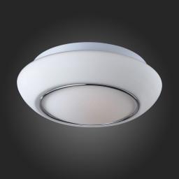 Светильник настенно-потолочный ST-Luce SL497.502.02
