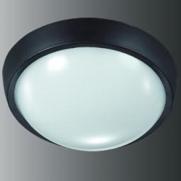 Уличный настенно-потолочный светильник Novotech Opal Led 357184