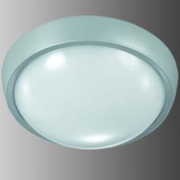 Уличный настенно-потолочный Novotech Opal Led 357185