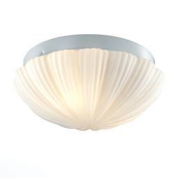Светильник настенно-потолочный ST-Luce SL495.502.02