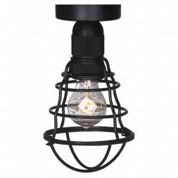 Светильник потолочный Lussole LSP-9875