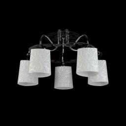 Светильник потолочный Maytoni Eurosize 12 TOC012-05-N