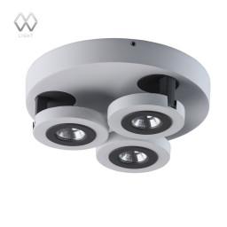 Спот MW-Light Астор 545020903