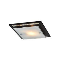 Светильник настенно-потолочный Maytoni Geometry 11 CL810-01-R