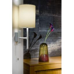 Настенный светильник Eglo Sendo 82809 в интерьере
