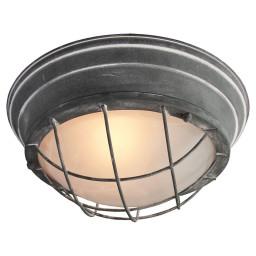 Светильник настенно-потолочный Lussole Loft LSP-9881