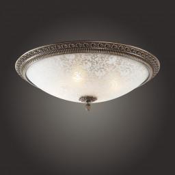 Светильник потолочный St-Luce SL135.402.04