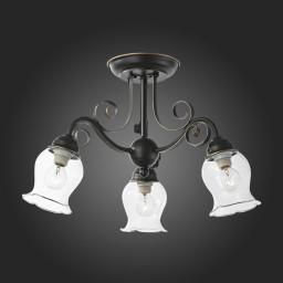 Светильник потолочный ST-Luce SL145.302.03